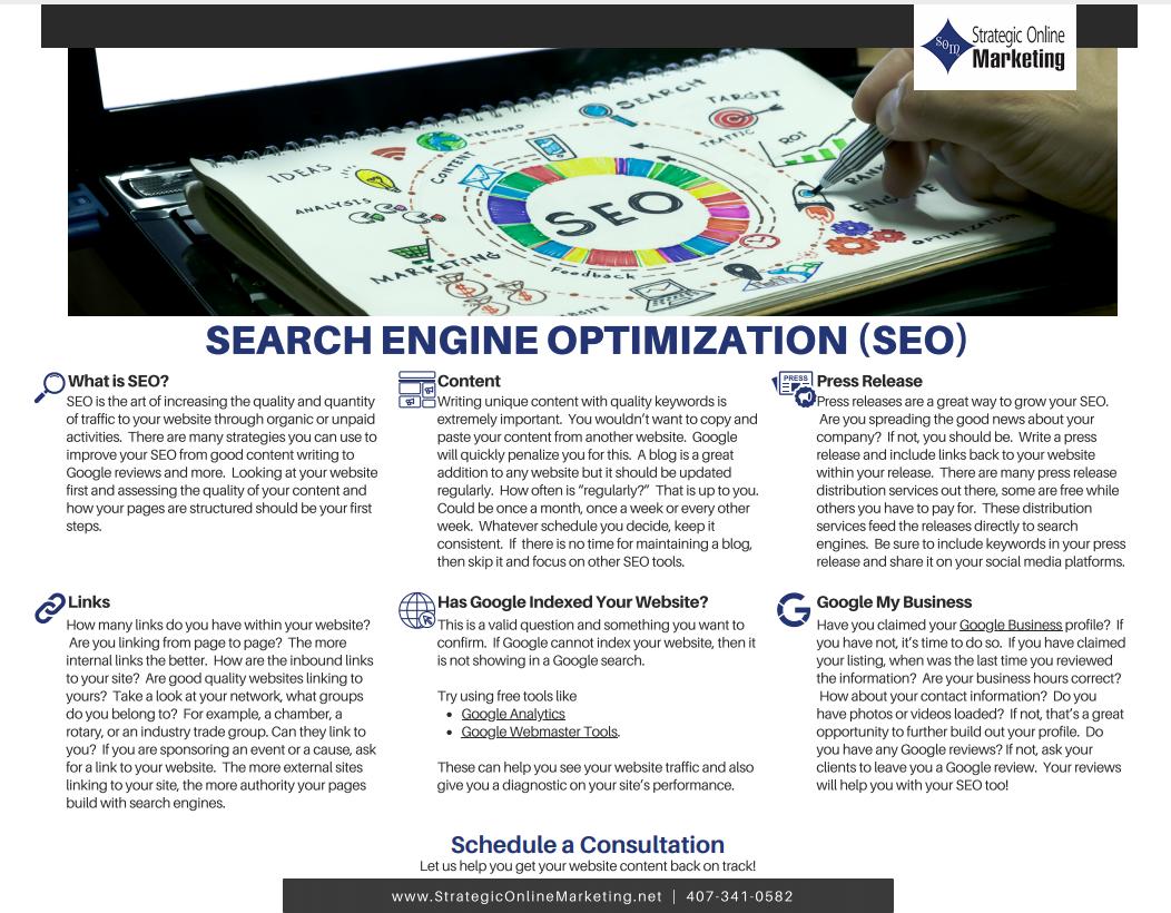 Search Engine Optimization Flyer